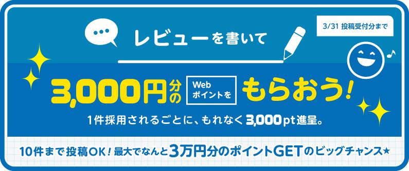 商品レビュー1件採用ごとに3,000円分のWebポイントプレゼント!