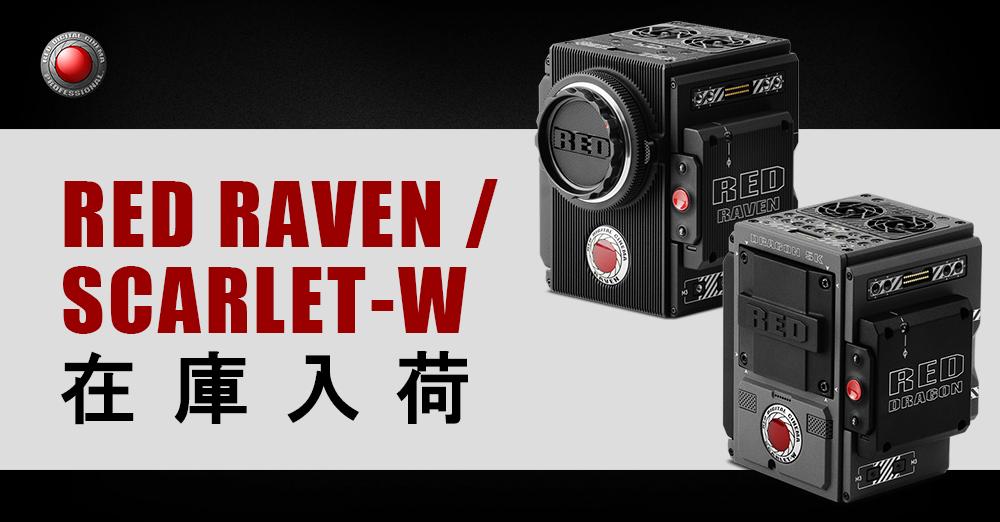 RED RAVEN / SCARLET-W 在庫入荷しました!
