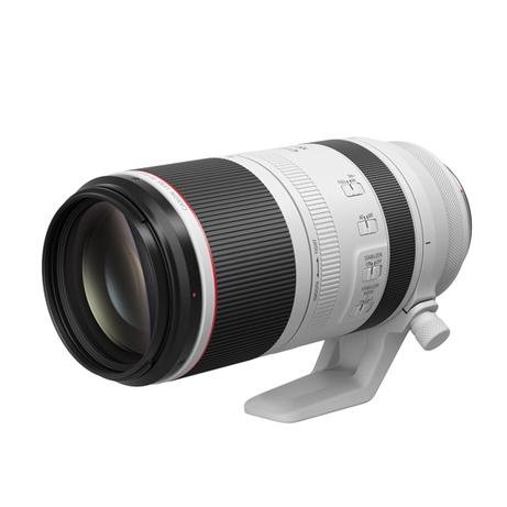 Canon RF100-500LIS RF100-500mm F4.5-7.1 L IS USM